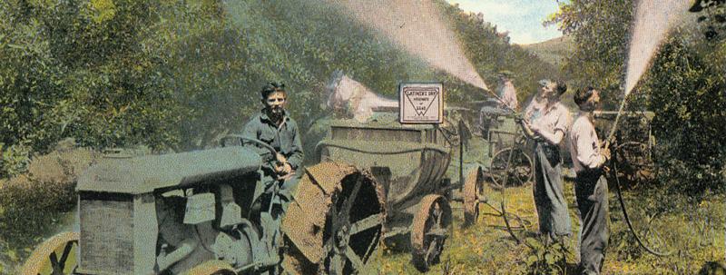 Lead Arsenate Spraying 1920s