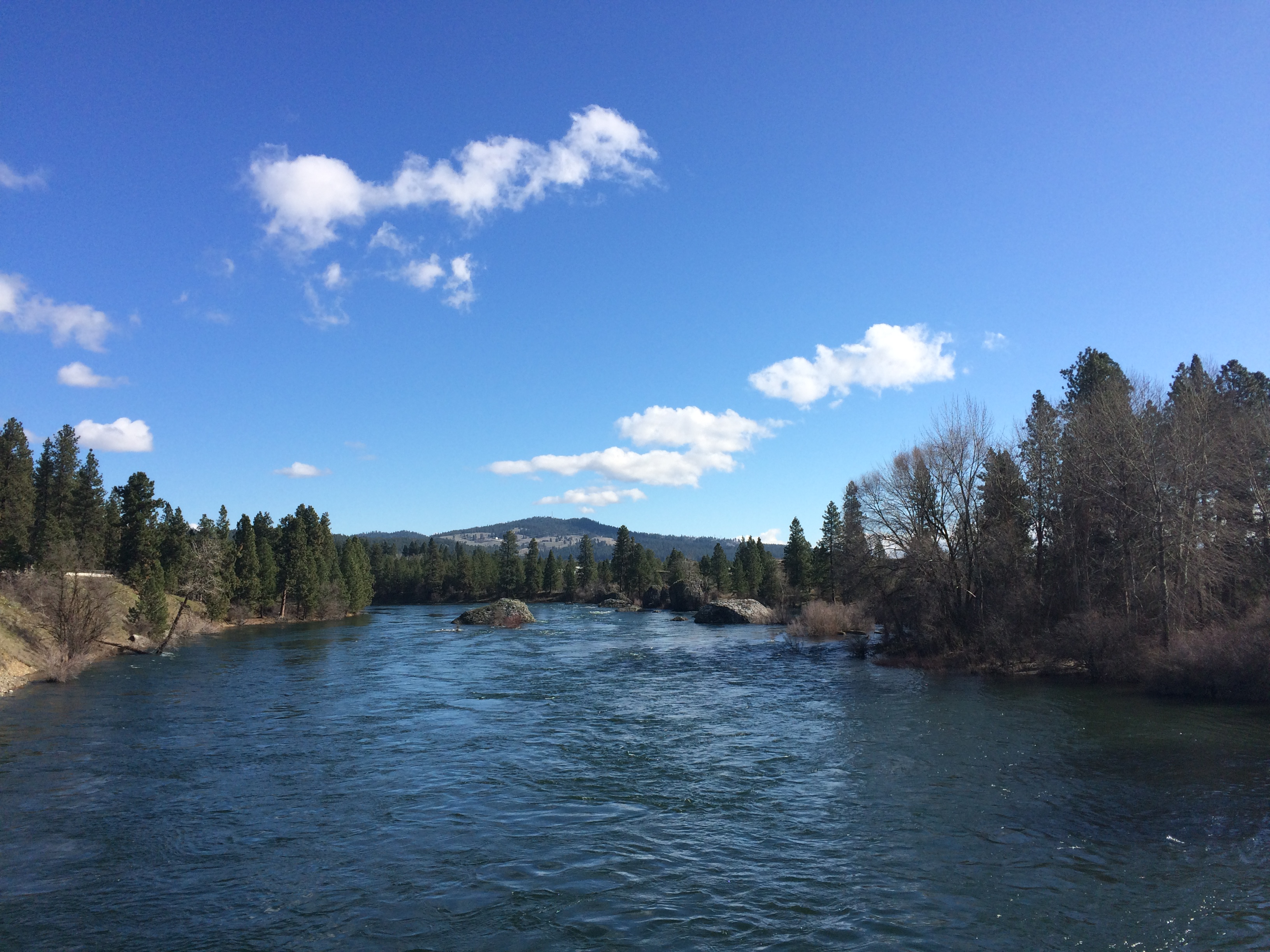 Looking downriver from Islands Lagoon in Spokane Valley